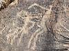 San Bushman Rock Art Engraving of Spirit rain dance