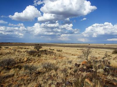 San Bushman Rock Art Site in Northern Cape Province South Africa