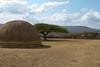 The Last Zulu King,  Cetshwayo's Royal Kraal