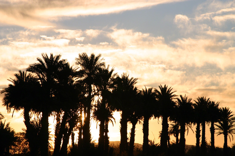 Sunrise Over Borrego Springs, Ca