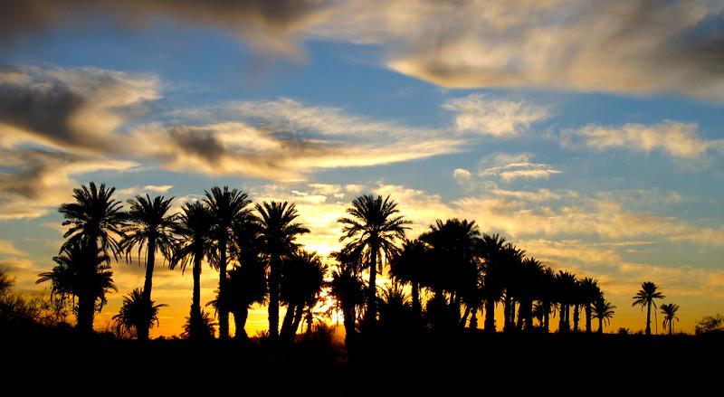 Borrego Springs, CA
