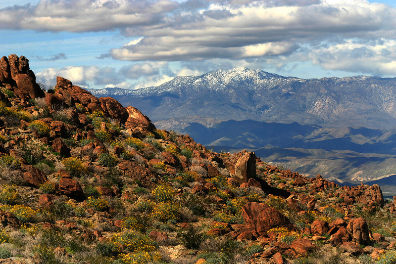 View Over Anza-Borrego Desert from Pass
