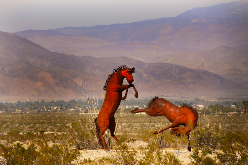 Borrego Springs, Galleta Meadows, Dueling Horses 2