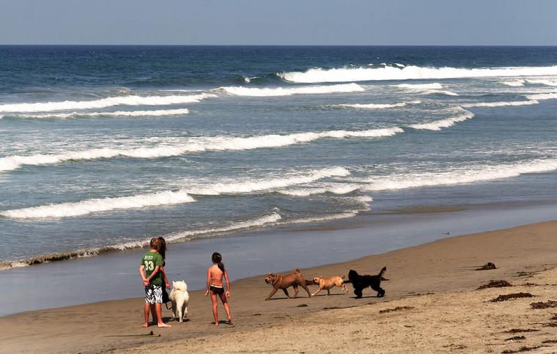 San Diego Beaches, Kids & Dogs on Del Mar Beach