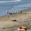 San Diego Beaches, Encinitas Beach