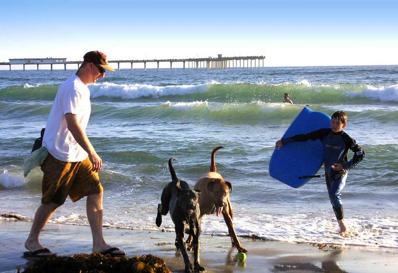 San Diego Beaches, Dog Beach, Ocean Beach