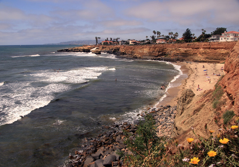 San Diego Beaches, Sunset Cliffs Beach with Flowers