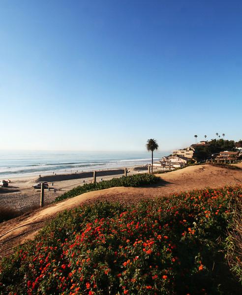 San Diego Beaches, Encinitas Moonlight Beach