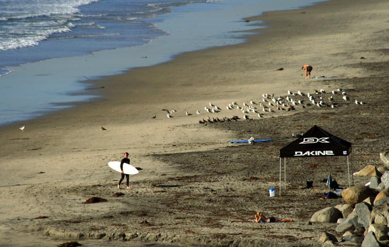 San Diego Beaches, Surfer Moonlight Beach