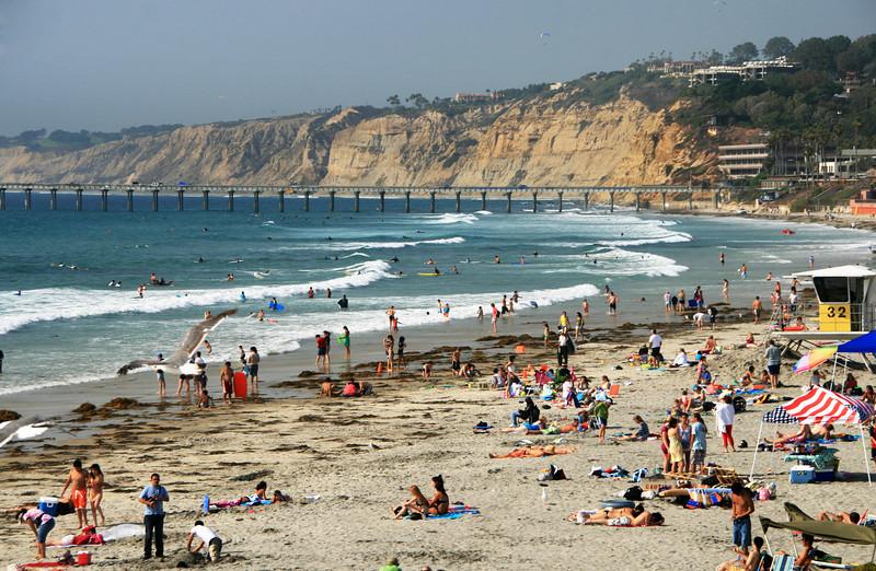 San Diego Beaches, Summertime at La Jolla Shores