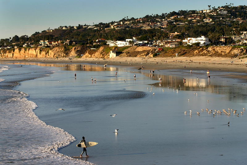 Pacific Beach San Diego, Beach with Cliffs and Surfer