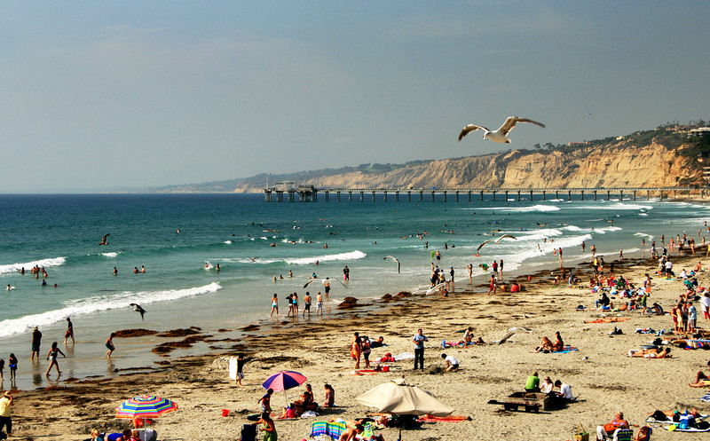 San Diego Beaches, La Jolla Shores in Summer