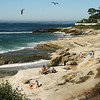 San Diego Beaches, Windansea dunes
