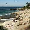 San Diego Beaches, Windansea dunes
