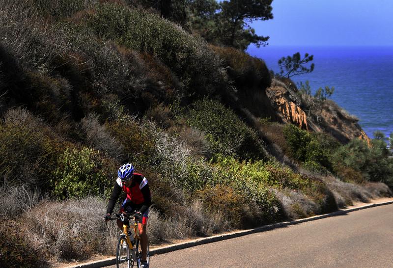 Bicyclist, Torrey Pines State Park, San Diego
