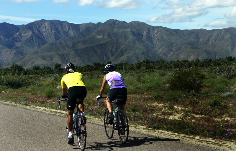 Bicyclists in Borrego Springs