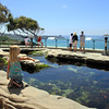 Scripps Aquarium La Jolla, Tide Pool Exhibit