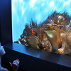 Birch Aquarium at Scripps, Child and Golden Fish