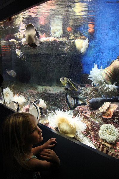 Scripps Aquarium La Jolla, Girl in Front of Aquarium