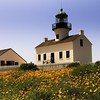 Cabrillo National Monument, Old Pt  Loma Lighthouse with Spring Flowers