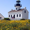 Cabrillo National Monument,  Lighthouse with Spring Flowers
