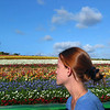 Carlsbad Flower Fields, Girl and Fields