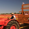 Carlsbad Flower Fields, Tractor Driver