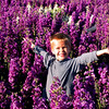 Carlsbad Flower Fields, Boy in Sea of Purple