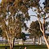 Coronado, Coronado Municipal Golf Course