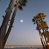 Coronado, Coronado Bridge with Full Moon