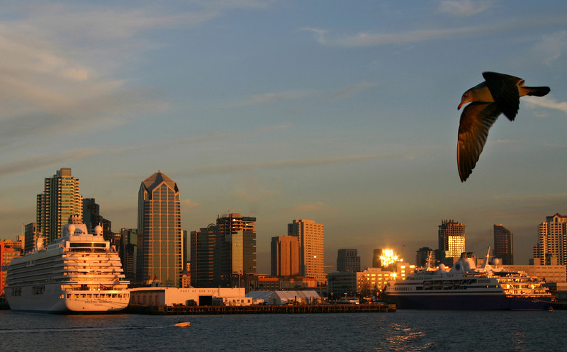 Sunset View, Cruise Ships in Port of San Diego