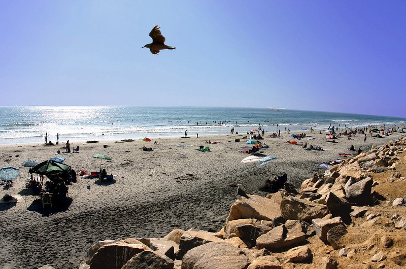 Torrey Pines Beach, Del Mar