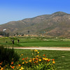 Auld Golf Course Chula Vista