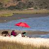 Grand Pacific Palisades Resort, Carlsbad California, Family Picnic Carlsbad Lagoon