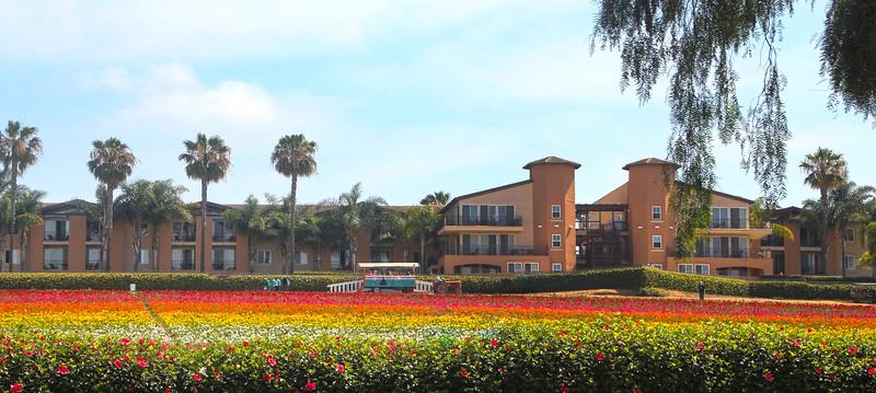 Grand Pacific Palisades Resort & Hotel, Carlsbad California