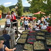 Grape Stomp at Menghini Winery in Julian California