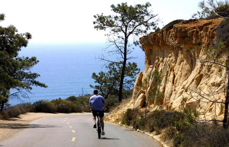 Bicyclist Torrey Pines