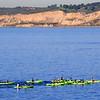 La Jolla, Kayakers in Ocean