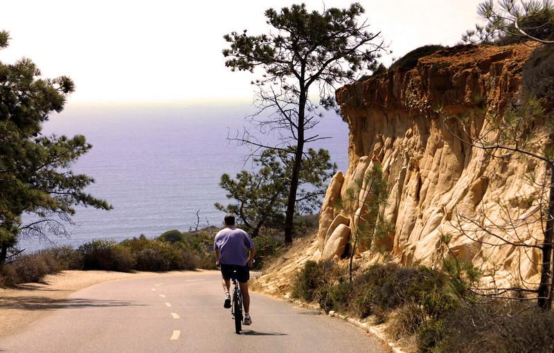 La Jolla, Cyclist Torrey Pines