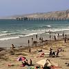 La Jolla Shores, Portrait View on Beach