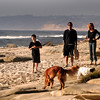 La Jolla, Family and Dogs on Beach