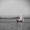 Sailboat in Bay
