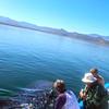 Bahia de los Angeles, Swimmer with Whale Shark
