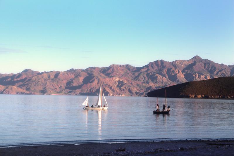 Las Animas Wilderness Lodge, Sailing Vessels in Bay