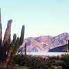 Las Animas Wilderness Lodge, Desert Landscape from Nature Trail
