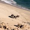 Los Cabos, Grand Velas Beach