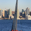 Sailing, Crew on San Diego Bay