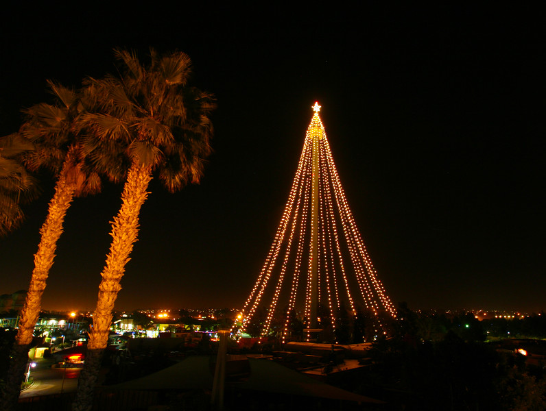 San Diego for the Holidays, SeaWorld Tower Tree