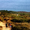 Torrey Pines State Park, Hiking Trail
