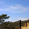 Couple Hiking through Torrey Pines State Park, La Jolla, California